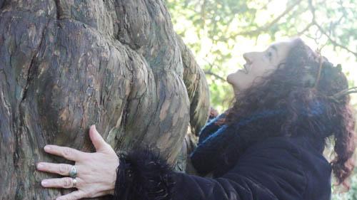 yew hugging